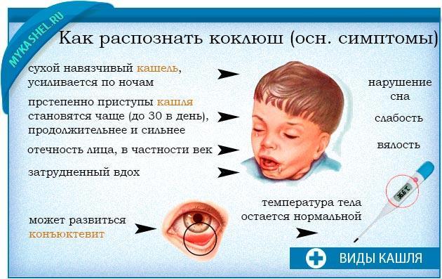 Если не лечить коклюш у взрослых в  163