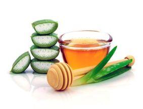 Алоэ с медом при кашле: лучшие рецепты и секреты приготовления