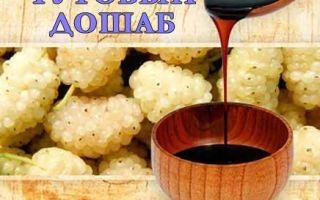 Тутовый дошаб – полезные и целебные свойства, инструкция по применению от кашля