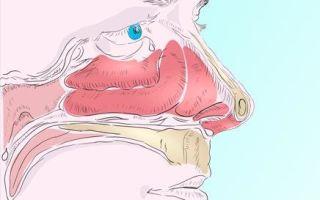 Как лечить кашель появившийся от насморка? Почему так происходит и что делать?