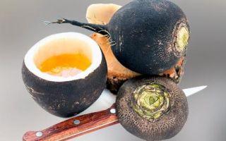 Редька от кашля: полезные свойства, виды, рецепты с медом и не только