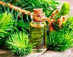 Пихтовое масло при кашле — полезно и просто