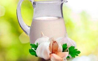Лечение кашля с помощью молока с чесноком: рецепты приготовления