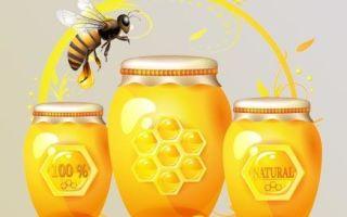 Мед при кашле — как правильно выбрать и основные способы лечения