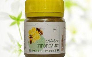 Используем мазь Прополиса гомеопатическую при кашле и не только