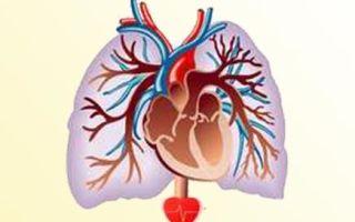 Кашель после инфаркта миокарда и инсульта, его лечение и профилактика