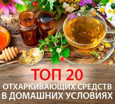 Отхаркивающие народные средства от кашля в домашних условиях — наш топ 20