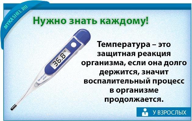 важно знать о температуре