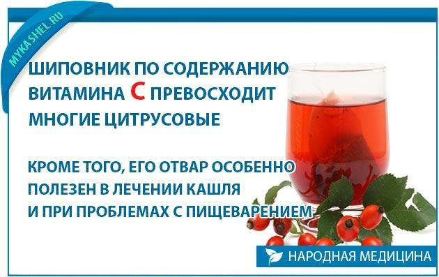 в шиповнике Содержание витамина С