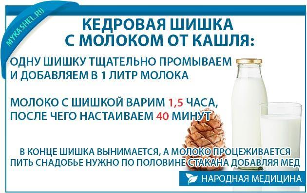 Кедровая шишка с молоком