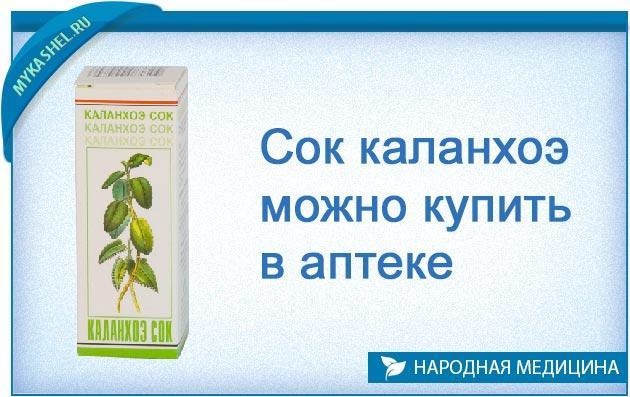 сок каланхоэ можно купить в аптеке