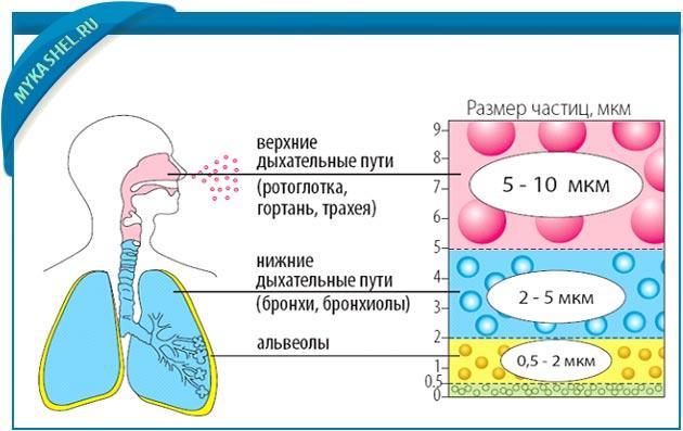 как действует аэрозоль терапия на органы дыхания